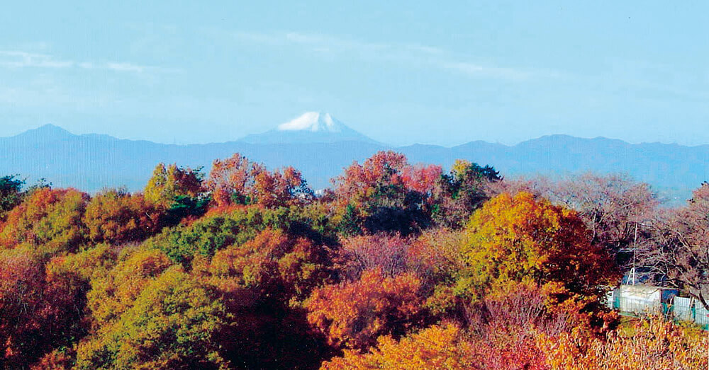 文化の森・六道山公園