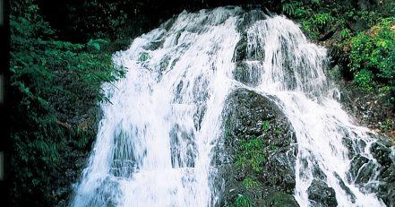 白岩の滝コース