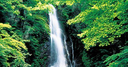 百尋ノ滝ハイキングコース